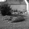 photo 3 du jardin avant les travaux d'aménagement