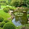 Bassin et jardin de rêve à lausanne,