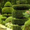 Jardin à la française avec topiaire