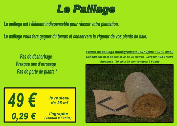 Le paillage biodégradable