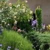 composition végétale et création florale