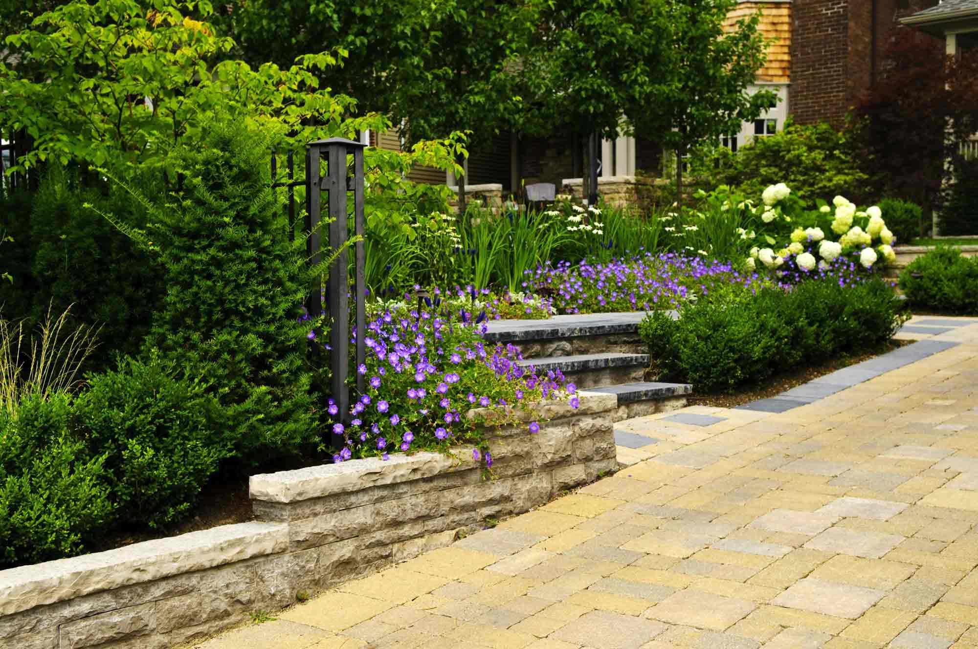 concept nature paysagiste conseil cr ateur de jardin sur mesure. Black Bedroom Furniture Sets. Home Design Ideas